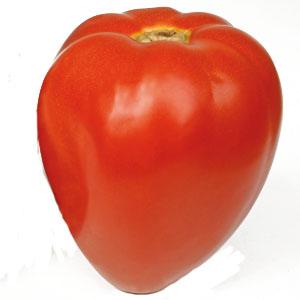 veredelte tomate 39 fleurette 39 gourmetzauber. Black Bedroom Furniture Sets. Home Design Ideas